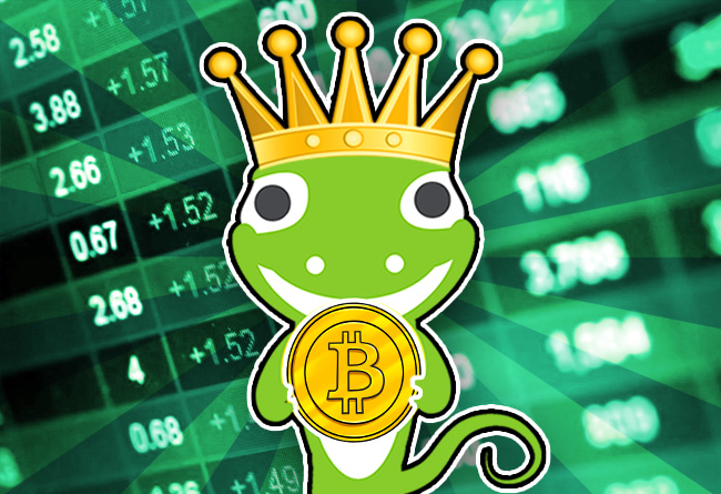 CoinGecko Year-End Report Cements Bitcoin as Crypto-King!