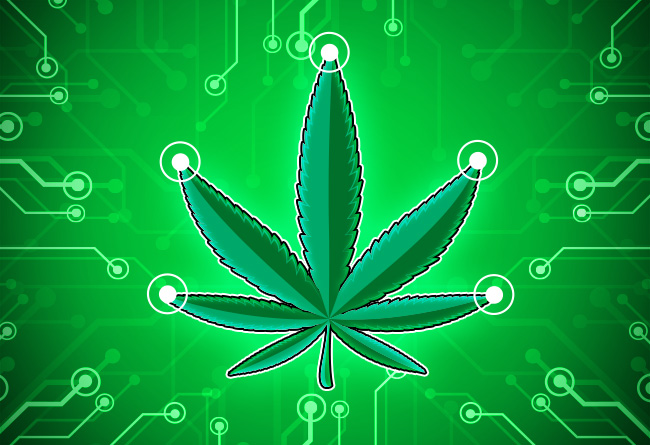 5-Cannabis-Based-Cryptocurrencies-to-Watch