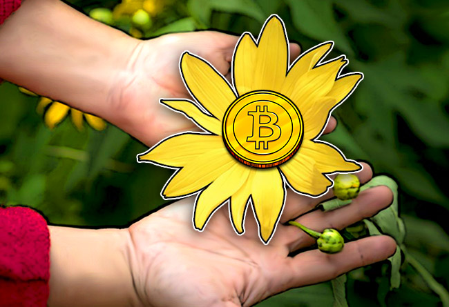 Bitcoin-Isnt-Just-for-the-Rich-its-for-the-Greater-Good