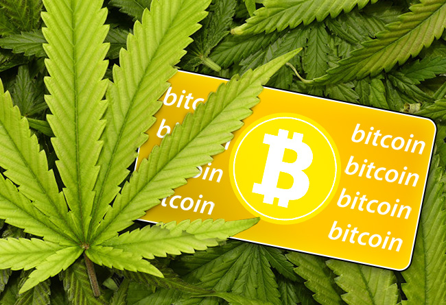 buy cannabis cryptocurrency