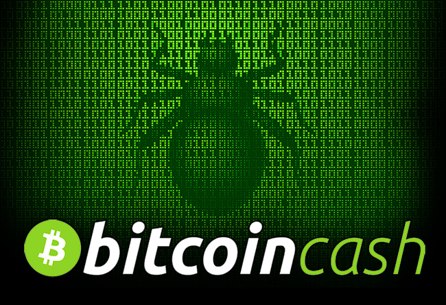 Code-with-bugs-on-it-and-bitcoin-cash