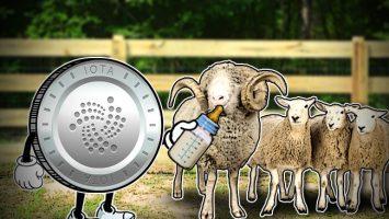 Start-Feeding-Sheep-with-Your-IOTA