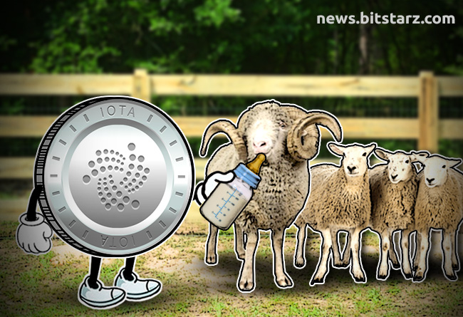 Start-Feeding-Sheep-with-Your-IOTA
