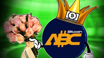 Bitcoin-Cash--Three-Months-on-Can-We-Finally-Crown-a-Winner