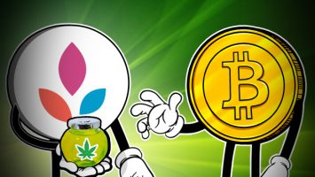 No-Borders-Inc-Allows-Users-to-Buy-CBD-Oil-with-Crypto
