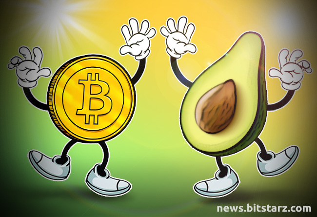 how much is avocado in cryptocurrency