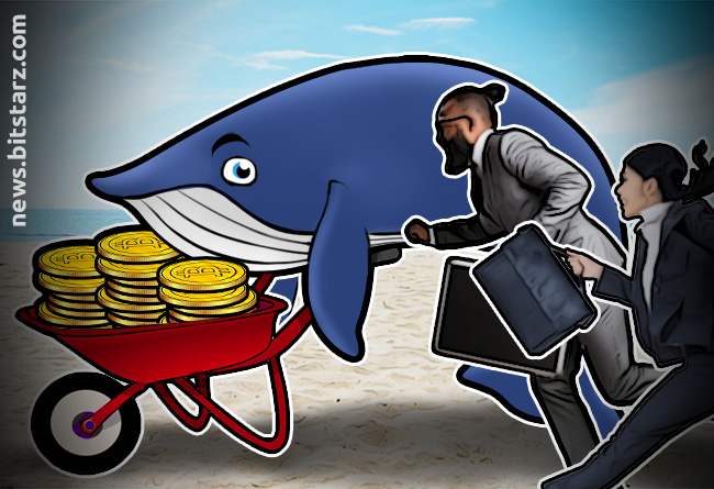Can-Anything-be-Done-to-End-Market-Manipulation-by-Whales