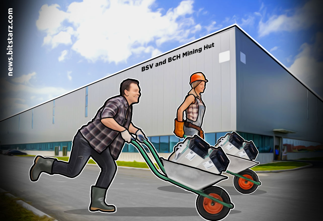 BSV-and-BCH-Settle-at-50_-Pre-halving-Hashrate